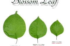 blossom-leaf-single