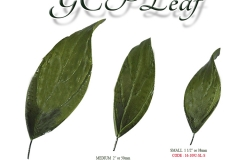 gcp-leaves-single