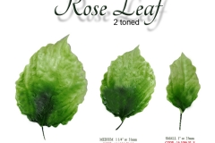 rose-leaf-2-tone-single