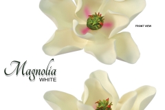 magnolia-white-with-shade-pink