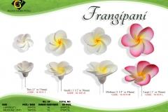 set-frangipani