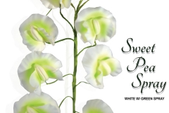 sweet-pea-spray-15-1087whg