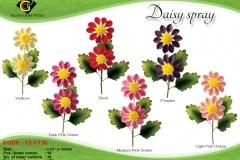 6-daisy