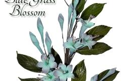 Blue-Grass-Blossom--16-1125