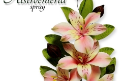 alstroemeria-spray