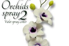 orchids-spray-2