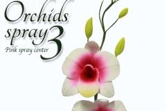 orchids-spray-3