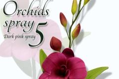 orchids-spray-5